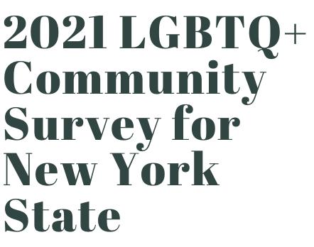 2021 LGBTQ+ Community Survey for New York State